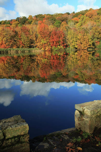 Wall Art - Photograph - Stepping Into Autumn by Karol Livote
