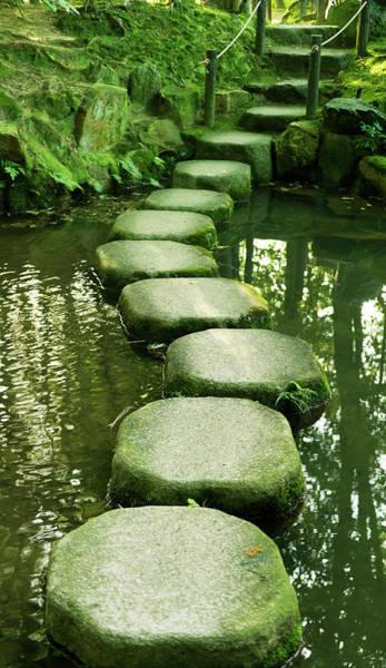 Vertical Garden Photograph - Stepping Stones In A Japanese  Garden by Brytta