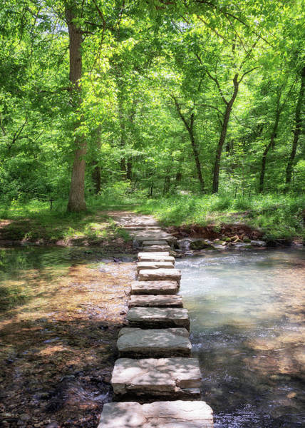 Photograph - Stepping Stones To Rock Springs by Susan Rissi Tregoning