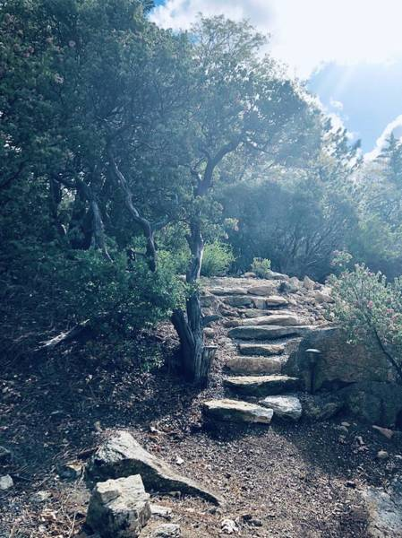 Photograph - Steps To Enlightenment  by Jeremy McKay