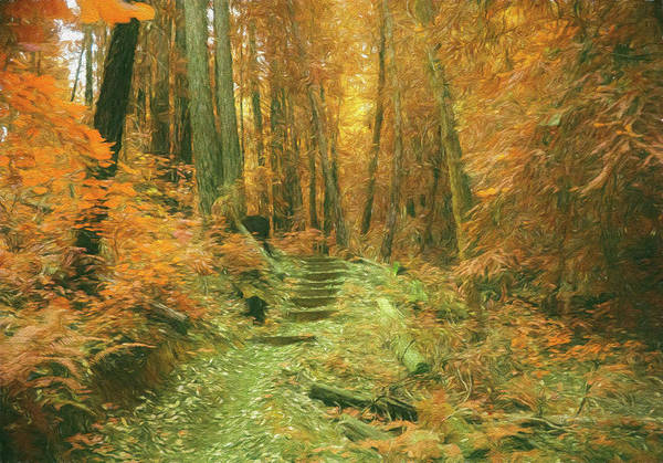 Photograph - Steps To The Fantasy Forest by Bill Posner