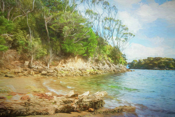 Photograph - Stewart Island New Zealand Beach Painterly by Joan Carroll