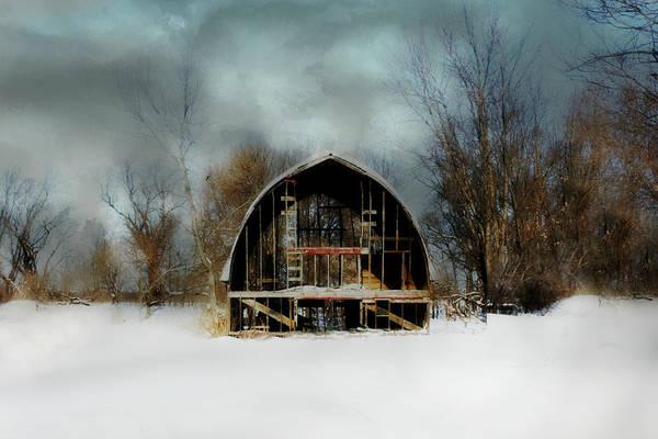 Photograph - Still Has A Warm Heart by Julie Hamilton