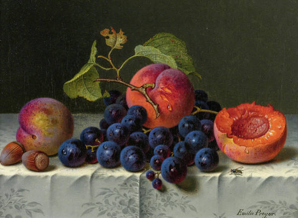 In Service Painting - Still Life Of Peaches, Grapes, And Nuts On A Table by Emilie Preyer
