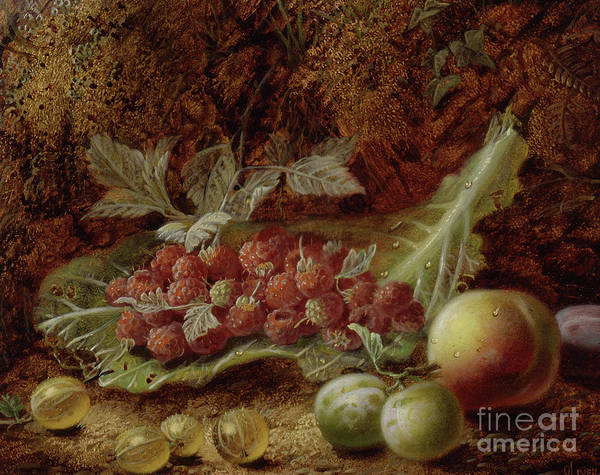 Wall Art - Painting - Still Life Of Raspberries, Gooseberries, Peach And Plums On A Mossy Bank by Oliver Clare