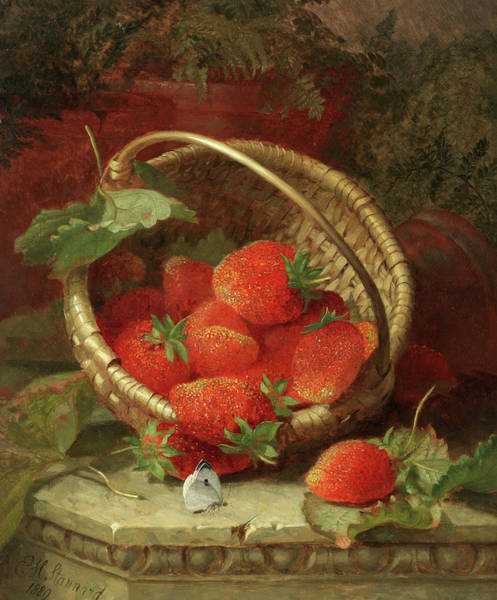 Wall Art - Painting - Still Life Of Strawberries With A Cabbage White Butterfly by Eloise Harriet Stannard