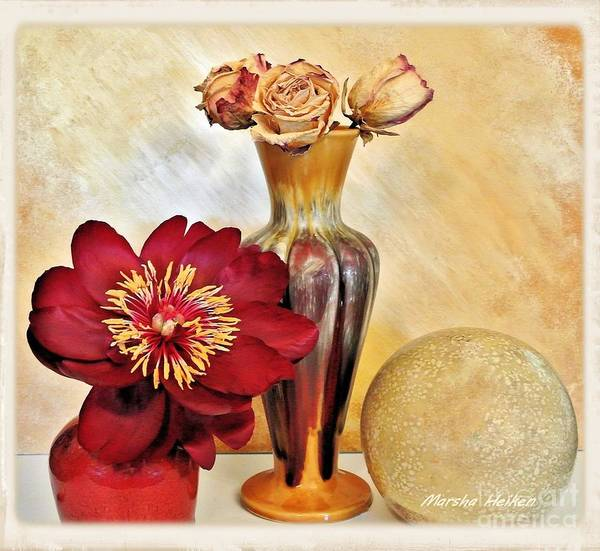 Wall Art - Photograph - Still Life Peony And Dried Roses by Marsha Heiken