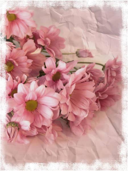 Digital Effect Photograph - Still Life Photograph, Chrysanthemum by Abdul Kadir  Audah