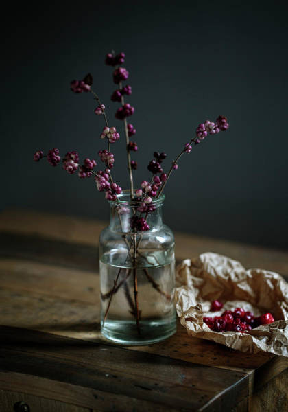 Wall Art - Photograph - Still Life With Berries by Nailia Schwarz