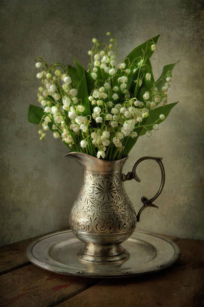 Photograph - Still Life With Lily Of The Valley by Jaroslaw Blaminsky