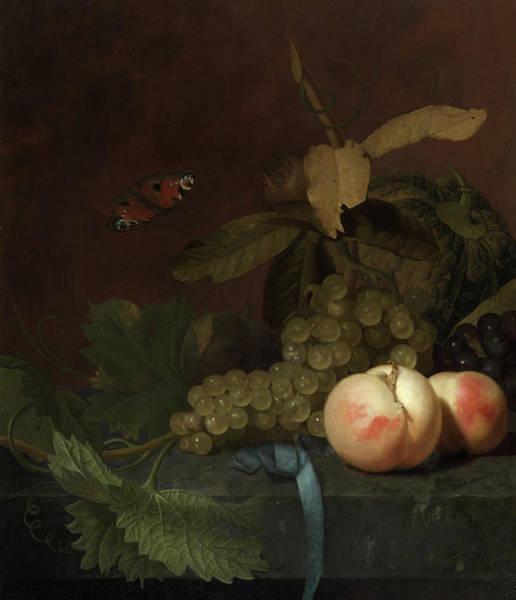 Wall Art - Painting - Still Life With Peaches, Grapes, And Melon And A Butterfly On A Stone Plate by Godefridus Schalcken