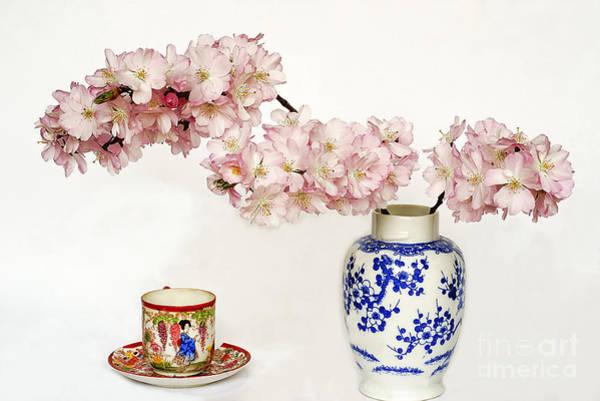 Wall Art - Photograph - Still Life With Sakura Blossom. by Alexander Vinogradov