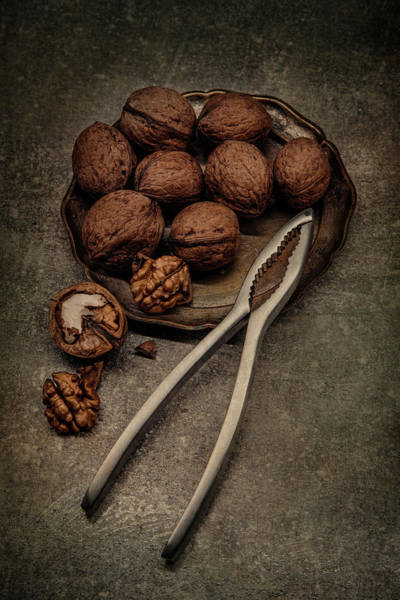 Wall Art - Photograph - Still Life With Walnuts by Jaroslaw Blaminsky