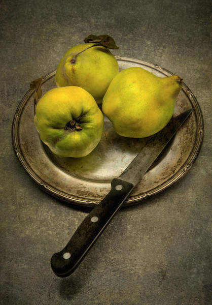 Quince Photograph - Still Life With Yellow Quinces by Jaroslaw Blaminsky