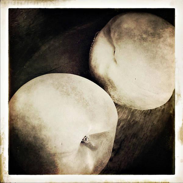 Photograph - Stillnight by Catherine Sobredo