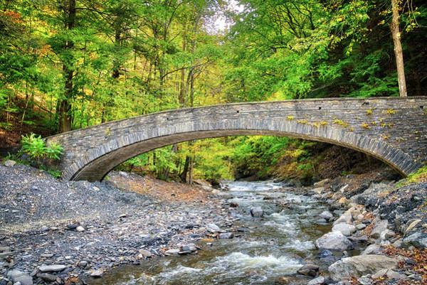 Photograph - Stone Bridge In Fillmore Glen State Park - Finger Lakes, New York by Lynn Bauer