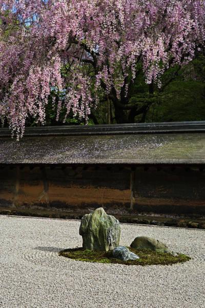 Vertical Garden Photograph - Stone Garden by John W Banagan