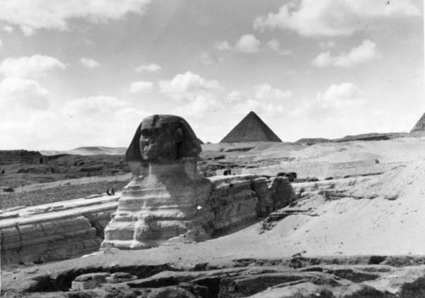 Giza Photograph - Stone Guardian by Topical Press Agency
