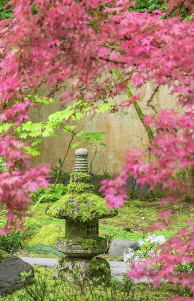 Wall Art - Photograph - Stone Lantern, Portland Japanese by William Sutton