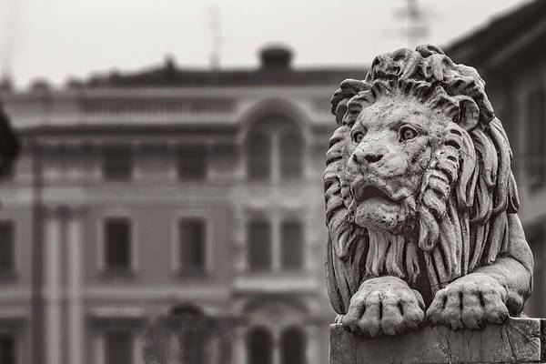 Photograph - Stone Lion by Roberto Pagani