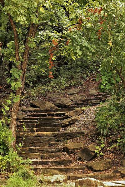 Photograph - Stone Stairway In The Woods by Sheila Brown