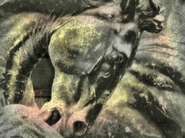 Photograph - Stone Steed Art by JAMART Photography