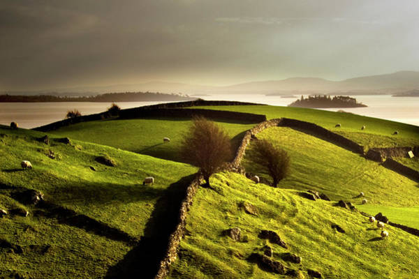 Photograph - Stone Walls On Grassy Rural Hillside by George Karbus Photography