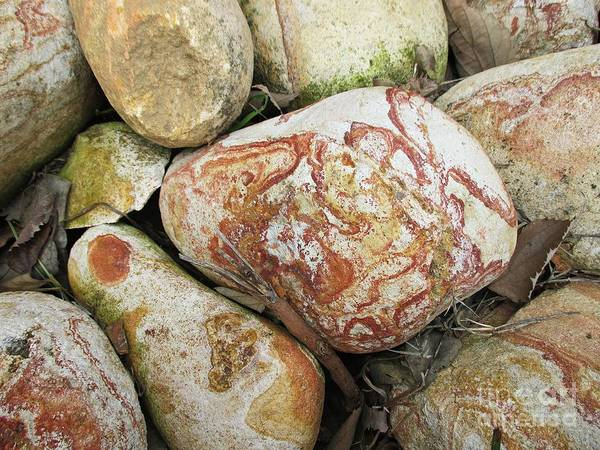 Photograph - Stones In Benalmadena by Chani Demuijlder