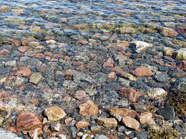 Photograph - Stones In The Baltic Sea by Chani Demuijlder