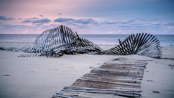 Photograph - Storm Fence Sunrise by Steve Stanger