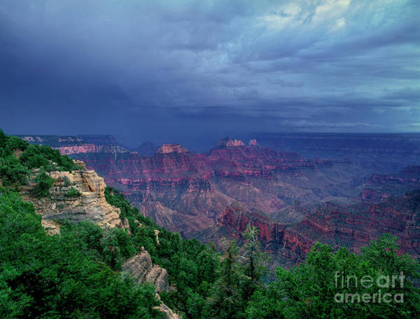 Photograph - Storm North Rim Grand Canyon National Park Arizona by Dave Welling