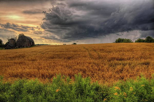 Photograph - Storm Over Golden Grain by Dale Kauzlaric