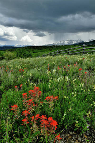 Photograph - Storm Over Sneffels Range In Colorado by Ray Mathis