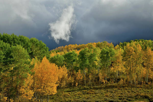 Photograph - Storm Rolls In Over Dallas Divide 16 by Ray Mathis