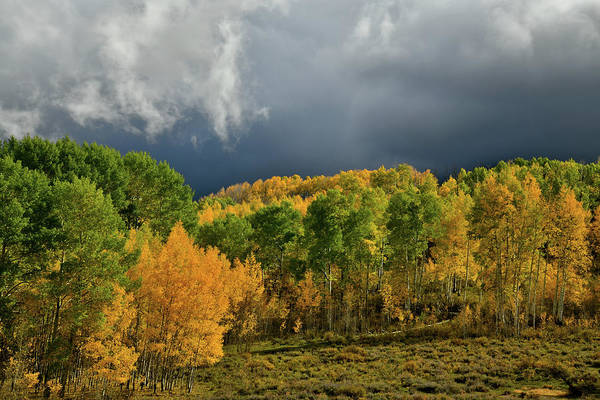 Photograph - Storm Rolls In Over Dallas Divide 18 by Ray Mathis