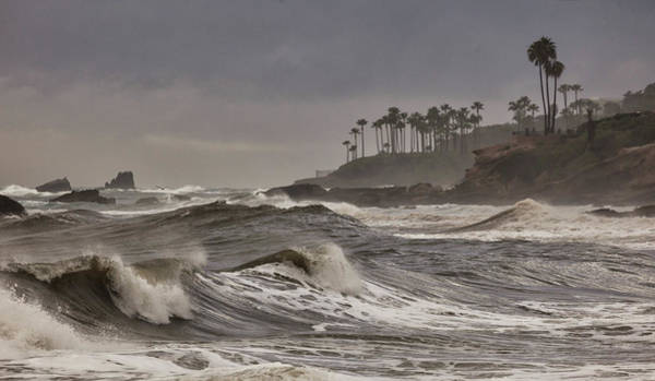 Photograph - Storm Swell North Laguna by Cliff Wassmann