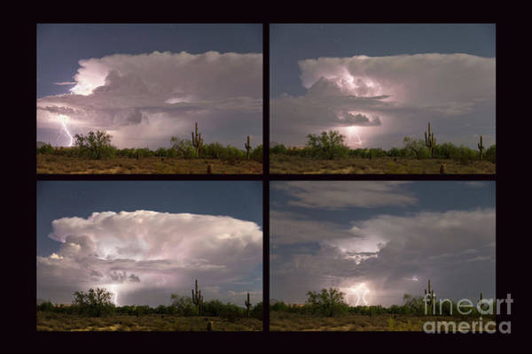 Photograph - Storming Sonoran Desert by James BO Insogna