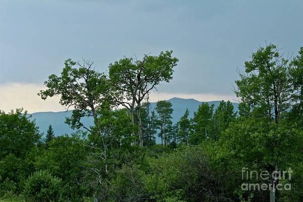 Photograph - Storm's End by Ann E Robson
