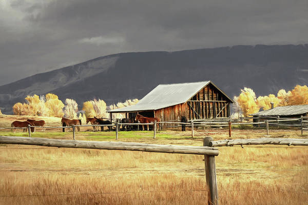 Wall Art - Photograph - Stormy Autumn Day In Wyoming by Donna Kennedy