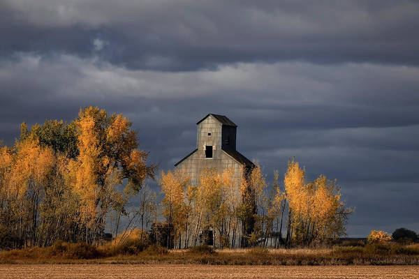 Photograph - Stormy Light On Abandoned Josephine by Harriet Feagin