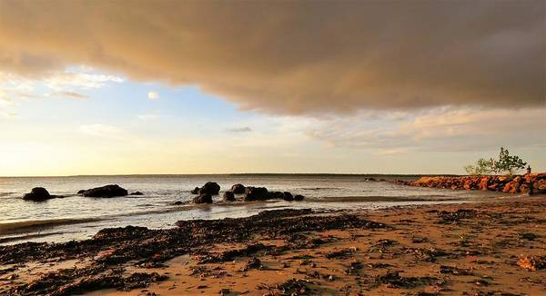 Photograph - Stormy Rocky Point Beach by Joan Stratton