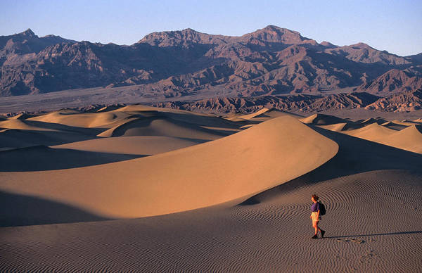 Mature Photograph - Stovepipe Wells, Sand Dunes With Hiker by John Elk Iii