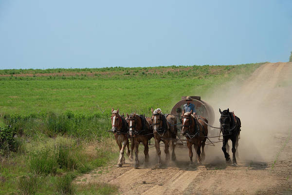 Wall Art - Photograph - Strasburg Lancaster County - Horse Team by Bill Cannon