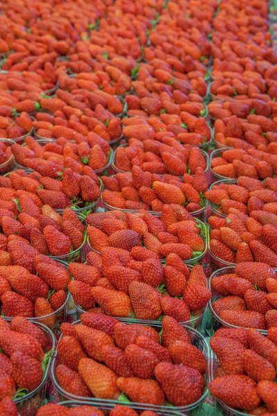 Wall Art - Photograph - Strawberries At Outdoor Market by Lisa S. Engelbrecht