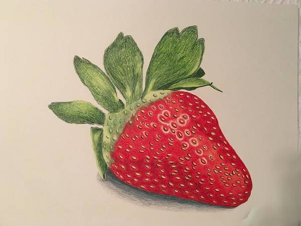 Juicy Drawing - Strawberry by Colette Lee