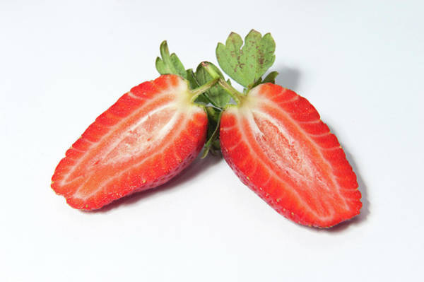 Photograph - Strawberry Halves by Helen Northcott