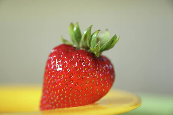 Photograph - Strawberry Red by Marie Leslie