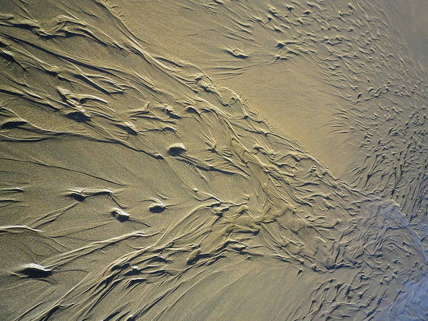 Wall Art - Photograph - Streaming Beach Sand Ripples Abstract by Richard Brookes