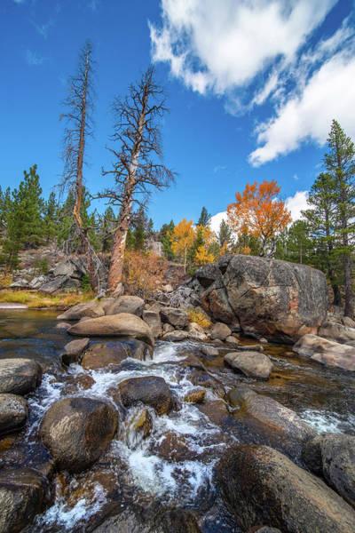 Photograph - Streams Of Hope Valley - 3 by Jonathan Hansen