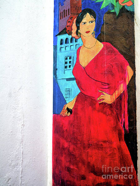 Photograph - Street Art Seville Style by John Rizzuto